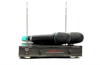 AUDIOVOICE WL-21VM - радиосистема с 2 вокальными