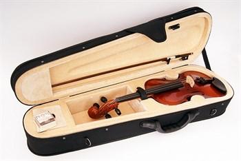 B15-4/4 Скрипка в футляре со смычком, Strunal - фото 8943